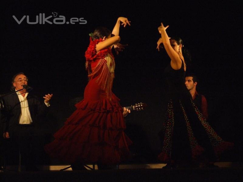 Actuacion Flamenco