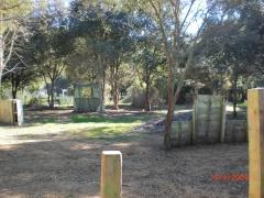 Campo 3 bosque