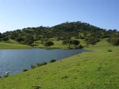Cuidamos el paisaje natural