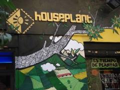 Grow shop houseplant madrid