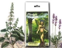 Hierbas y plantas m�gicas