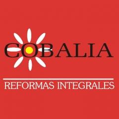 Cobalia reformas integrales - foto 7