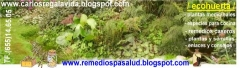 Ecohuerta medicinal biologica - foto 3