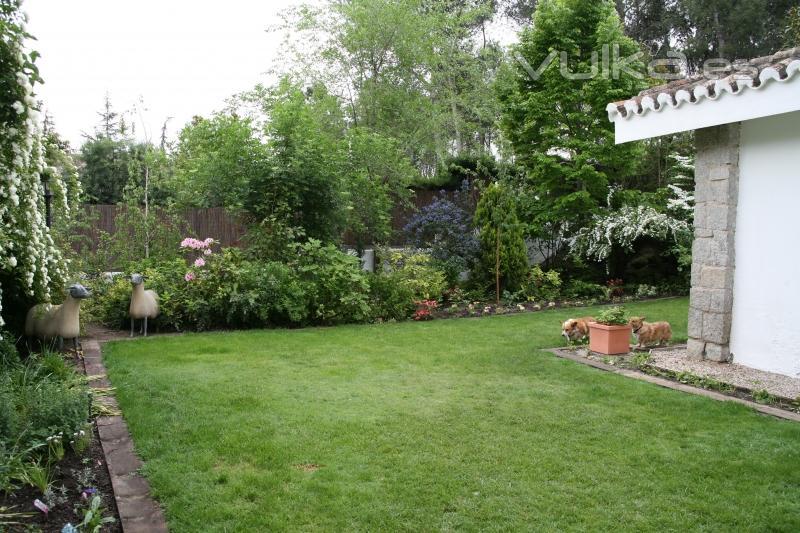 Azarbe jardines for Arbustos de jardin fotos