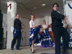 Flamenco joven en sala el castillo sonido  ph sounds