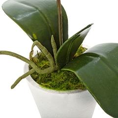 Planta artificial phalaenopsis blanca en lallimona.com detalle2