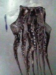 Tentaculos calamar gigante