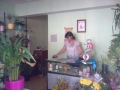 Floreria m�luisa - esteiro flor - foto 13