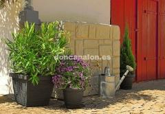 Dep�sito muro don canal�n� - estilo r�stico e integrador