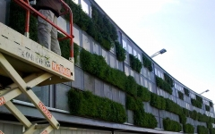 Jardín vertical en splau, barcelona