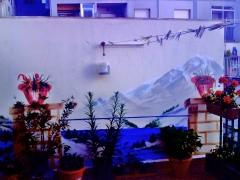 Decoraci�n -terraza