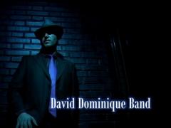 David dominique (video promo 2011)