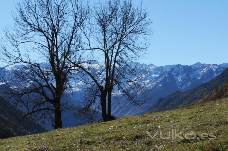 159 - Vistas de la Maladeta (Valle de Ar�n