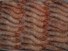 La corvina productos selectos y congelados sa - foto 19