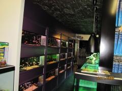 Tunel acuariofilaia