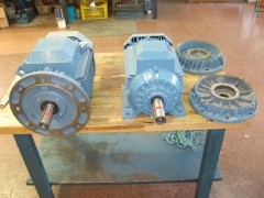 Motores el�ctricos y escudos brida.