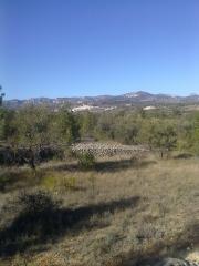 Rossell - finca rústica a 1 km. pueblo 1 ha. agua oportunidad 16.000 euros
