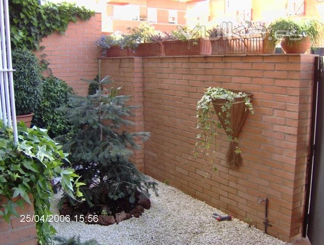Foto rehabilitacion de zona de jardin de bajo mantenimiento for Jardines de bajo mantenimiento