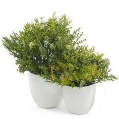 Planta artificial leucalendron doble en lallimona.com