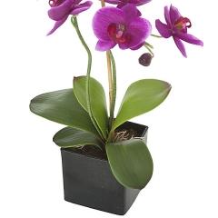 Planta artificial flores orquidea lila en lallimona.com detalle1
