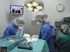 Cirugia Traumatologia