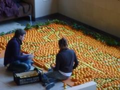 Mural realizado por dos estudiantes de 1º publicidad de la uji edgar y maria con naranjas y limones