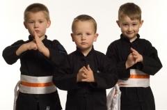 Clases de kung-fu wushu para ni�os en madrid