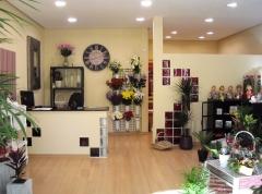 Mar�a mart�nez floristas valladolid - foto 12