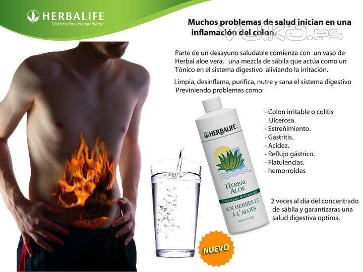 Herbalife Alicante
