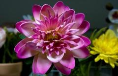 Foto 10 decoración - Cerezzas