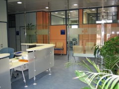 Zona de Consultas
