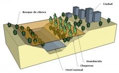 Estudios de inundabilidad y de riesgos naturales.www.exitgeoconsult.com