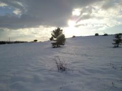 La nieve forma parte de nuestro entorno durante unas semanas.