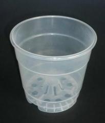 Maceta de pl�stico transparente 12 cm ( � 15 cm) de di�metro.
