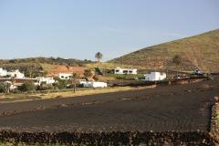 Mundo Mascota - Tabayesco (Lanzarote)