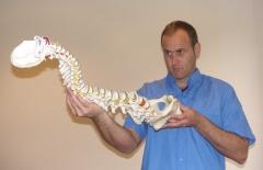 Mark barry quiropractico. centro barry quiropractica bilbao