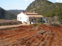 Transformaciones agrícolas. estudios agronómicos. www.exitgeoconsult.com