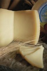 Fotografías  quesos