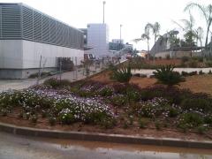 Aeropuerto de m�laga. trabajos frente a zona vip t3.