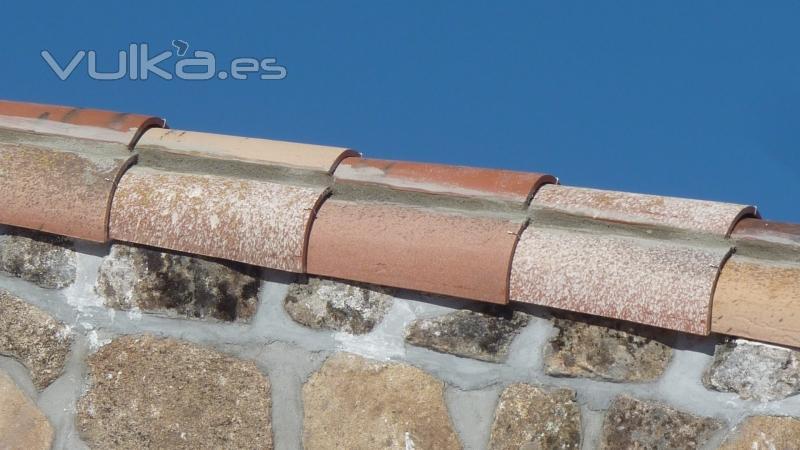 Foto remate lateral con teja curva for Empresa de cubiertas y tejados