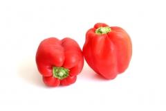 Pimiento (rojo, verde y amarillo): pur�, iqf, org�nico, asada, concentrado