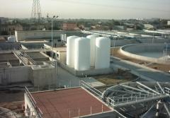 Intervención en trabajos de ampliación de la depuradora de pinedo (valencia).