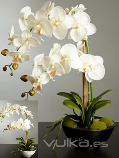 Foto orquideas artificiales de calidad orquidea for Orquideas artificiales