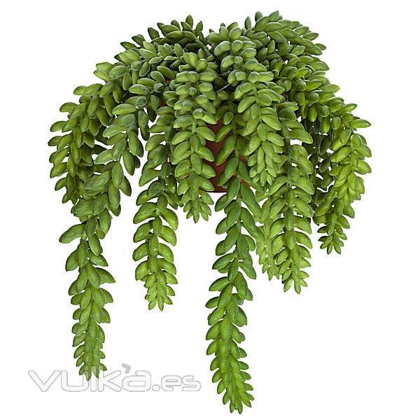 Foto planta artificial colgante sedum en for Plantas colgantes exterior sol