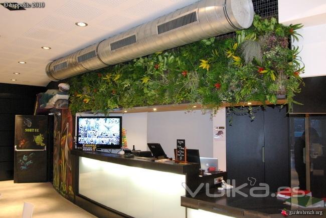 fotos jardins interiores : fotos jardins interiores:Foto: Jardines verticales interiores. Múltiples aplicaciones.