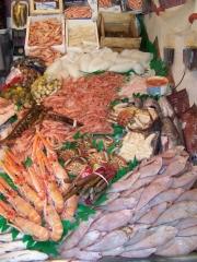 Gran variedad de pescados y mariscos selectos