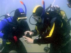 Clase Open Water Diver Padi