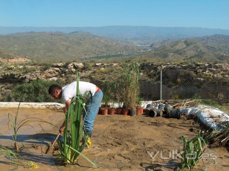 Segunda instalación de evapotranspiración realizada en España por nuestra empresa, en Almería.