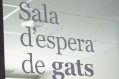 sala de espera de Balmesvet Clinica veterinaria. Veterinarios barcelona