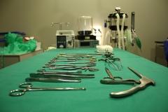 quir�fano de Balmesvet clinica veterinaria. www.balmesvet.com
